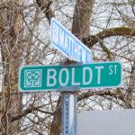 Chaska Neighborhood: Boldt Townhouses
