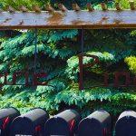 Prairie Pines – Eden Prairie Neighborhood