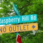 Raspberry Hills – Eden Prairie Neighborhood