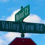 Walnut Court – Eden Prairie Neighborhood