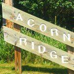 Acorn Ridge – Minnetonka Neighborhood