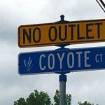 Coyote – Minnetonka Neighborhood