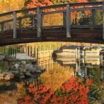 City of Woodland: Community Life