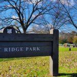 Northwest Edina: Bredesen Park