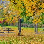 City of Burnsville: Parks & Trails