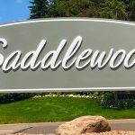 Saddlewood – Minnetonka Neighborhood